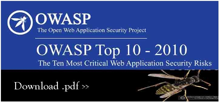 Download Owasp's Top 10 Most Critical Web Application Risk